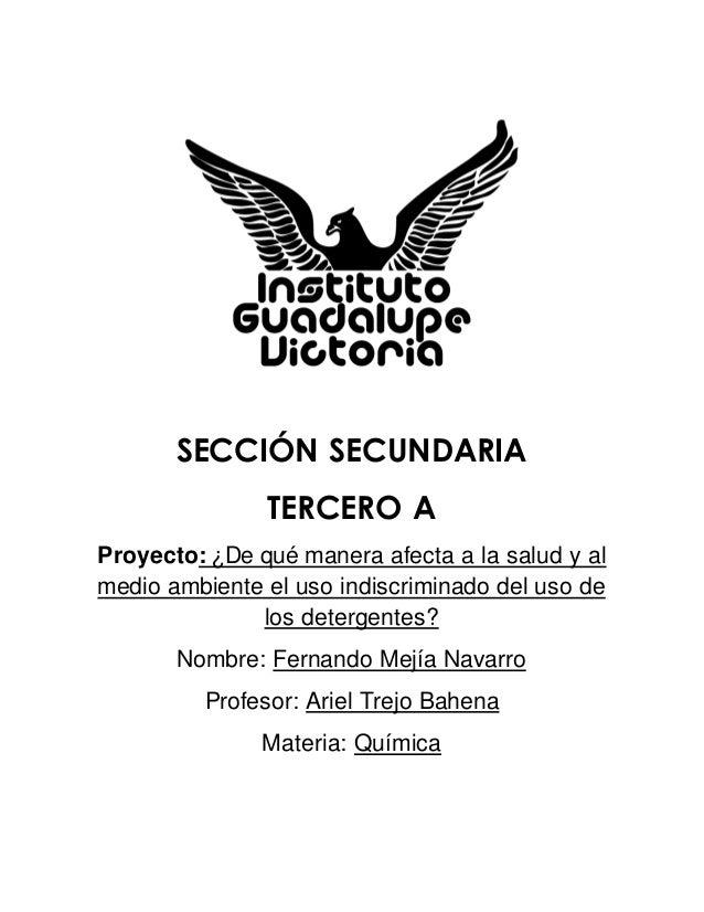 SECCIÓN SECUNDARIA TERCERO A Proyecto: ¿De qué manera afecta a la salud y al medio ambiente el uso indiscriminado del uso ...