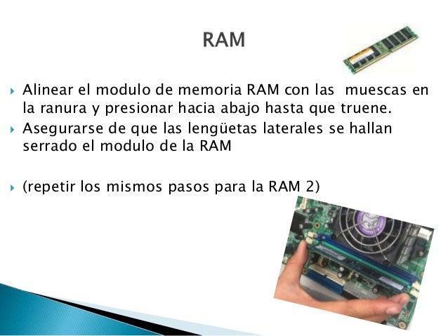  Alinear el modulo de memoria RAM con las muescas en la ranura y presionar hacia abajo hasta que truene.  Asegurarse de ...
