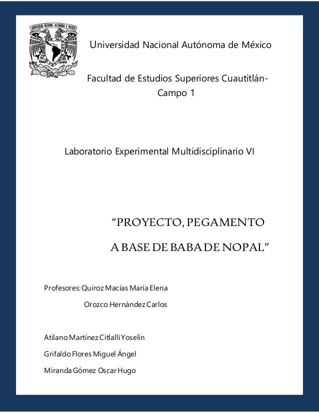 Universidad Nacional Autónoma de México Facultad de Estudios Superiores Cuautitlán- Campo 1 Laboratorio Experimental Multi...