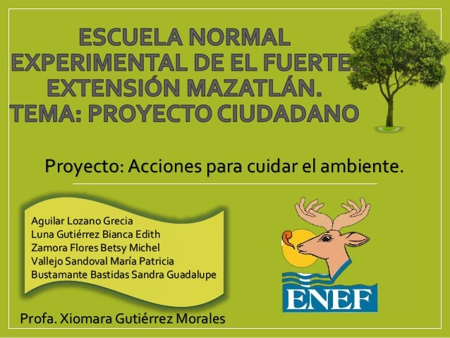 Proyecto 4 Grado Acciones Para Cuidar El Ambiente
