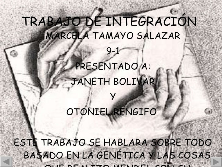 TRABAJO DE INTEGRACIÓN   <ul><li>MARCELA TAMAYO SALAZAR </li></ul><ul><li>9-1 </li></ul><ul><li>PRESENTADO A: </li></ul><u...