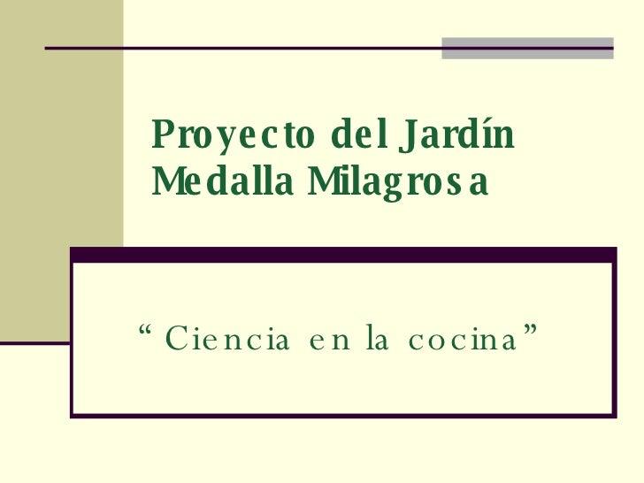 Proyecto del jardin medalla milagrosa ii for Proyecto jardineria