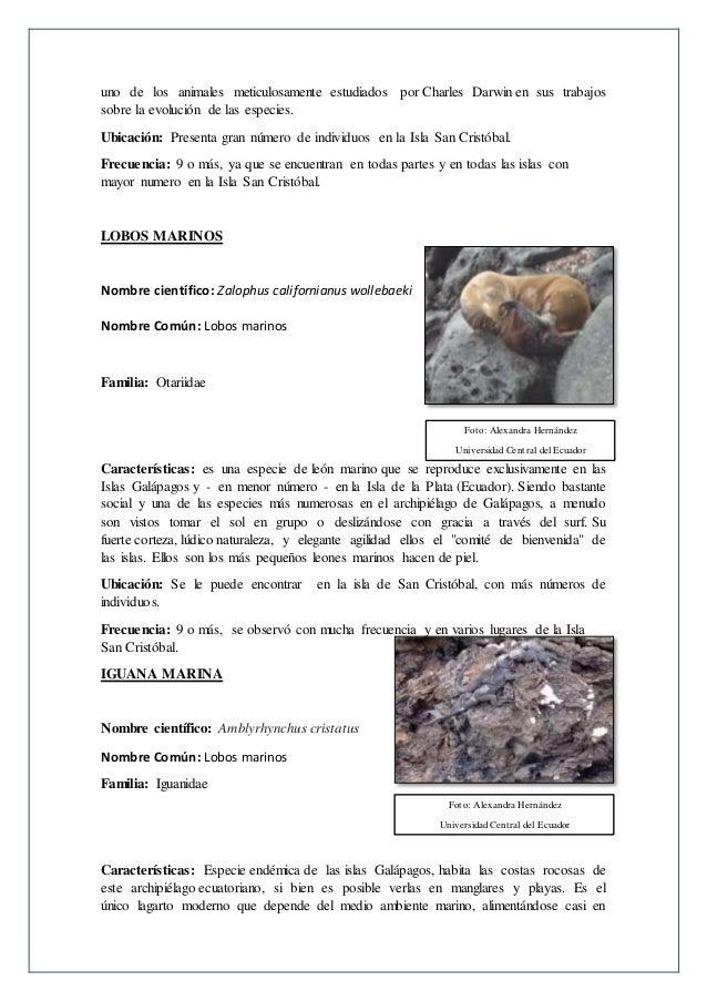 Proyecto individual-fauna44