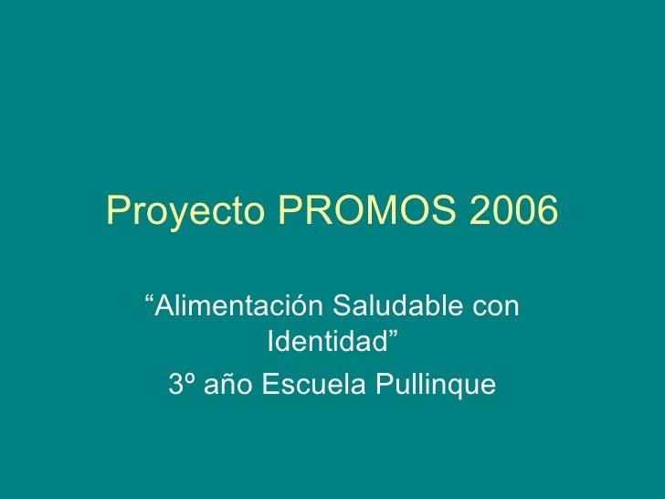 """Proyecto PROMOS 2006 """" Alimentación Saludable con Identidad"""" 3º año Escuela Pullinque"""