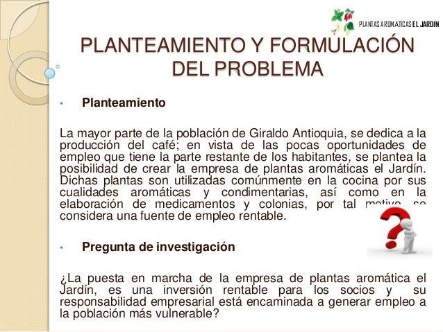 Proyecto plantas arom ticas - Plantas aromaticas en la cocina ...