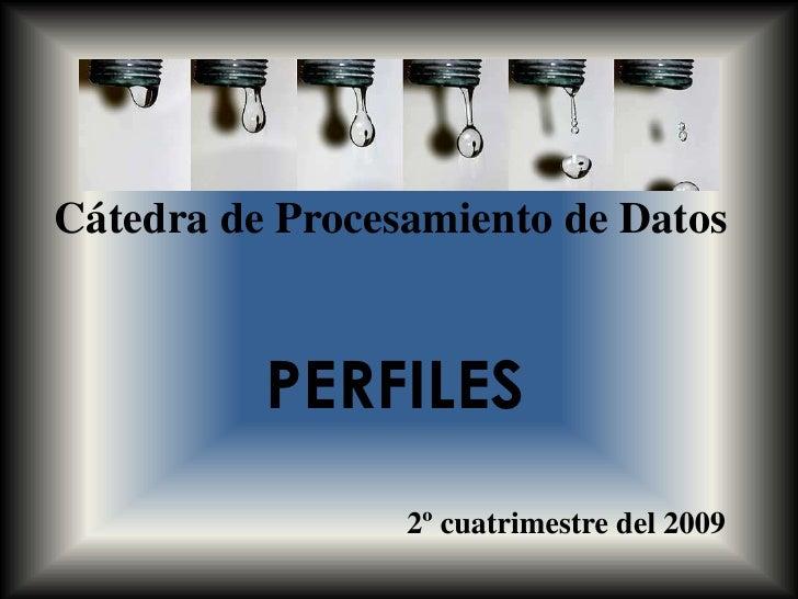Cátedra de Procesamiento de Datos<br />PERFILES<br />2º cuatrimestre del 2009<br />