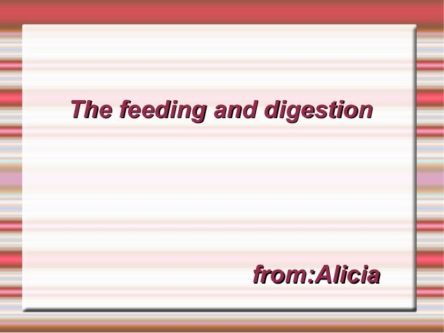 The feeding and digestion  from:Alicia