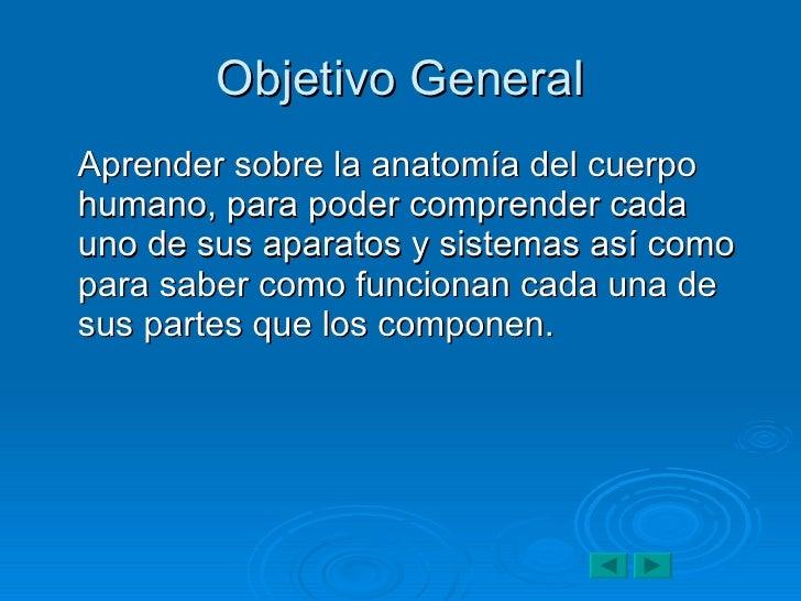 Único Ideas De Proyectos Anatomía Bandera - Anatomía de Las ...