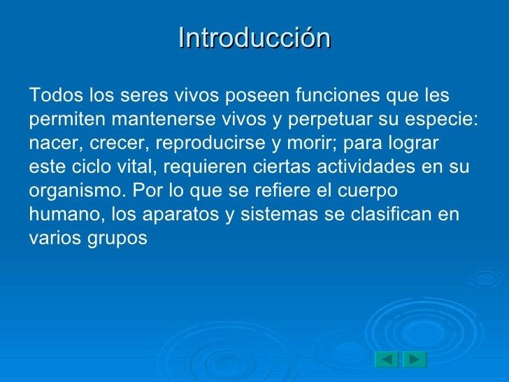 Encantador Introducción A La Anatomía Y Fisiología Ppt Viñeta ...