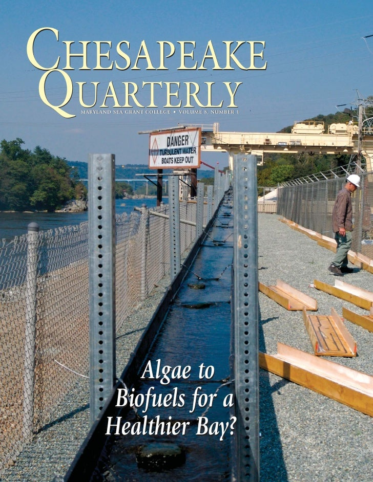 CHESAPEAKE QUARTERLY   MARYLAND SEA GRANT COLLEGE • VOLUME 8, NUMBER 1                  Algae to           Biofuels for a ...