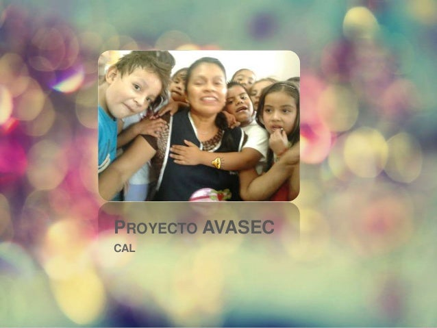 PROYECTO AVASECCAL
