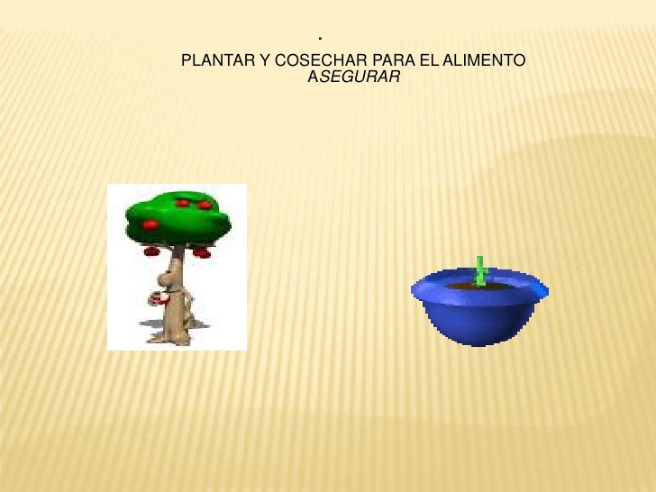 .<br />PLANTAR Y COSECHAR PARA EL ALIMENTO ASEGURAR<br />