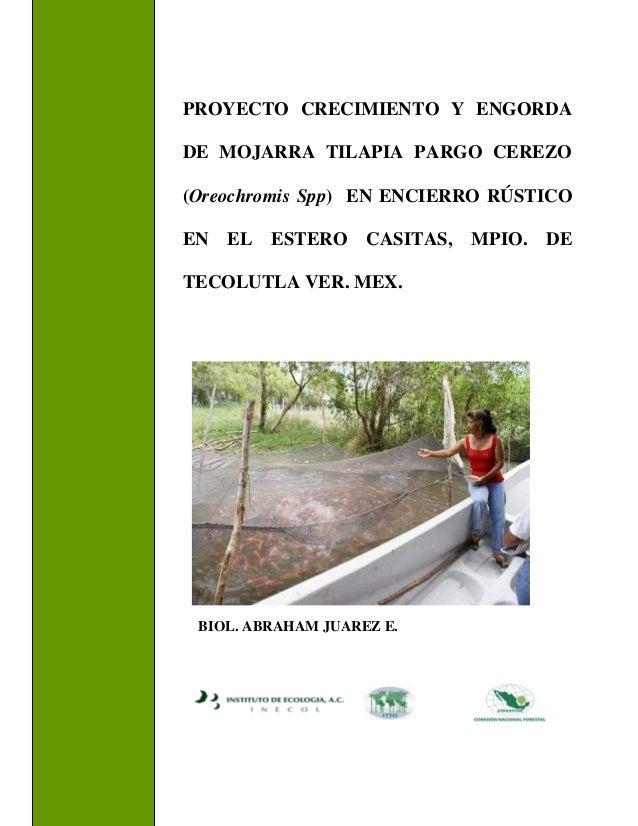 Proyecto casitas for Engorda de tilapia en estanques rusticos