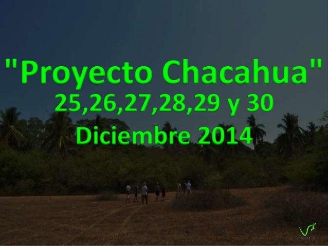 Una isla virgen  El viaje consiste en visitar Chacahua, una isla virgen ubicada en el estado  de Oaxaca. La isla cuenta co...
