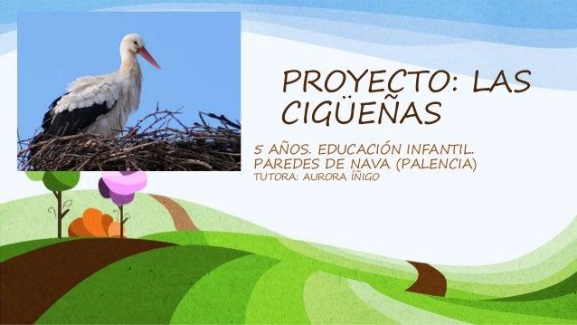 PROYECTO: LAS CIGÜEÑAS 5 AÑOS. EDUCACIÓN INFANTIL. PAREDES DE NAVA (PALENCIA) TUTORA: AURORA ÍÑIGO
