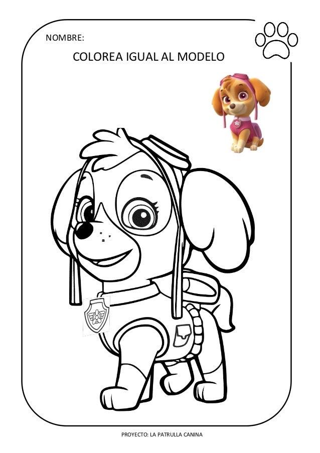 Patrulla Canina Skye Para Colorear Dibujos Para Colorear Patrulla