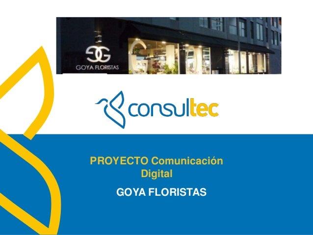 www.consultec.esPROYECTO ComunicaciónDigitalGOYA FLORISTAS