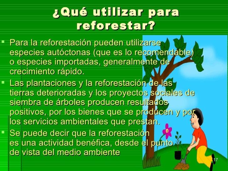 Proyecto comunidad verde desde la escuela for Importancia de los viveros forestales