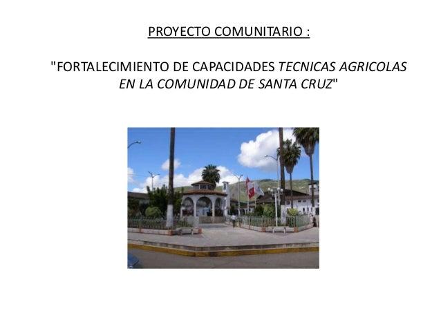 """PROYECTO COMUNITARIO : """"FORTALECIMIENTO DE CAPACIDADES TECNICAS AGRICOLAS EN LA COMUNIDAD DE SANTA CRUZ"""""""