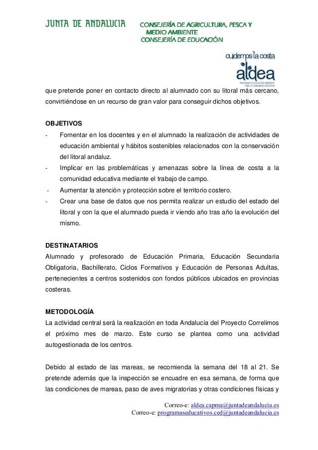 Proyecto Correlimos Slide 2