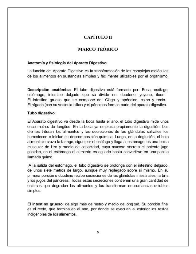 Hermosa Proyecto De Anatomía Y Fisiología Molde - Anatomía de Las ...