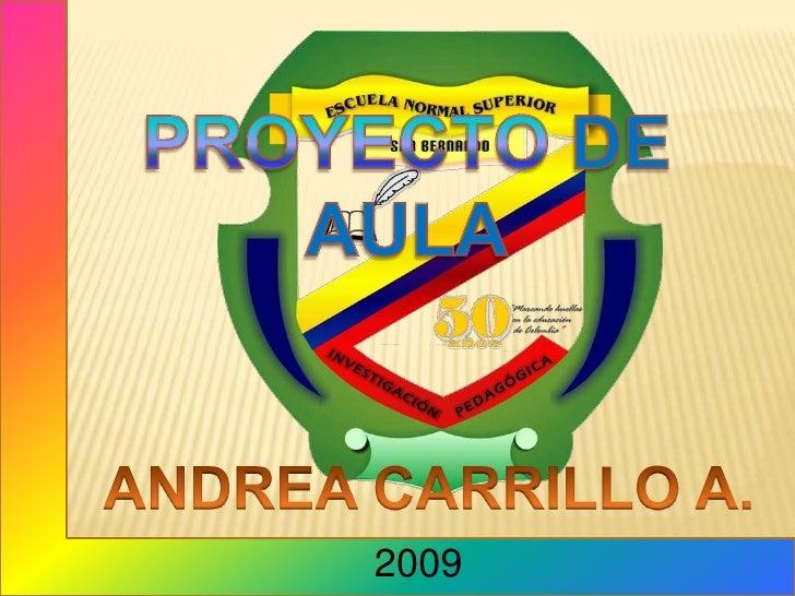 PROYECTO DE AULA<br />ANDREA CARRILLO A.<br />2009<br />