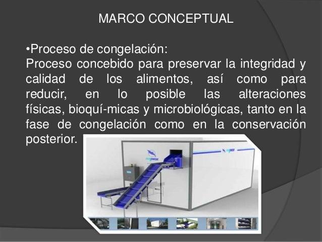 MARCO CONCEPTUAL•Proceso de congelación:Proceso concebido para preservar la integridad ycalidad de los alimentos, así como...