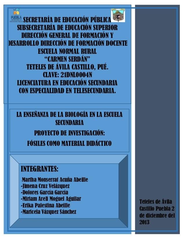 SECRETARÍA DE EDUCACIÓN PÚBLICA SUBSECRETARÍA DE EDUCACIÓN SUPERIOR DIRECCIÓN GENERAL DE FORMACIÓN Y DESARROLLO DIRECCIÓN ...