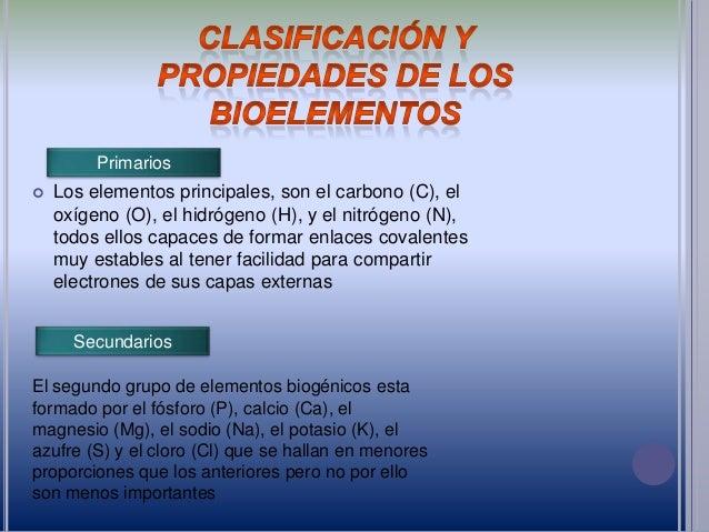 Bioelementos en el cuerpo humano - Alimentos que contienen silicio ...