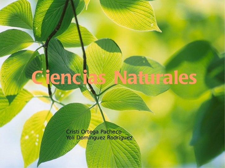Ciencias Naturales Cristi Ortega Pacheco Yoli Domínguez Rodríguez