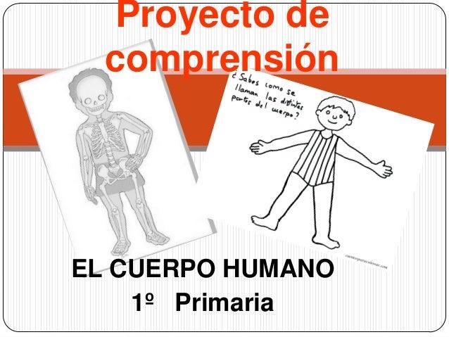 Proyecto de  comprensiónEL CUERPO HUMANO    1º Primaria