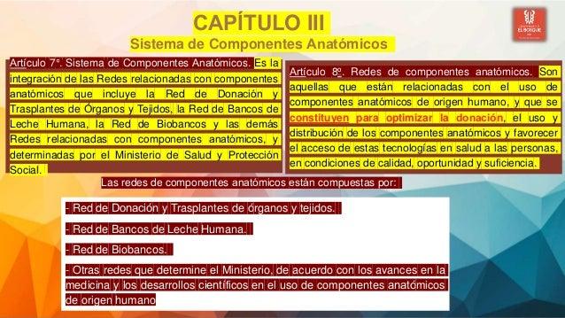 CAPÍTULO III Sistema de Componentes Anatómicos Artículo 7°. Sistema de Componentes Anatómicos. Es la integración de l...