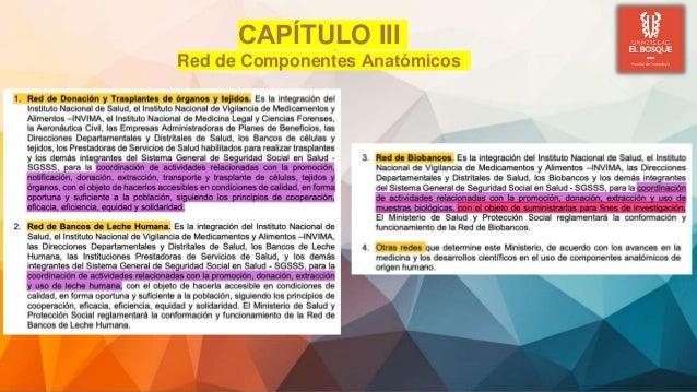CAPÍTULO III Red de Componentes Anatómicos