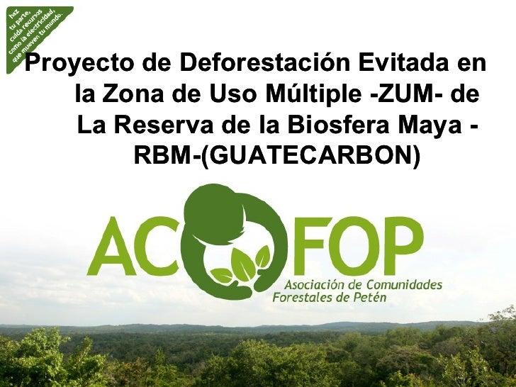 Proyecto de Deforestación Evitada en   la Zona de Uso Múltiple -ZUM- de                            ZUM-    La Reserva de l...