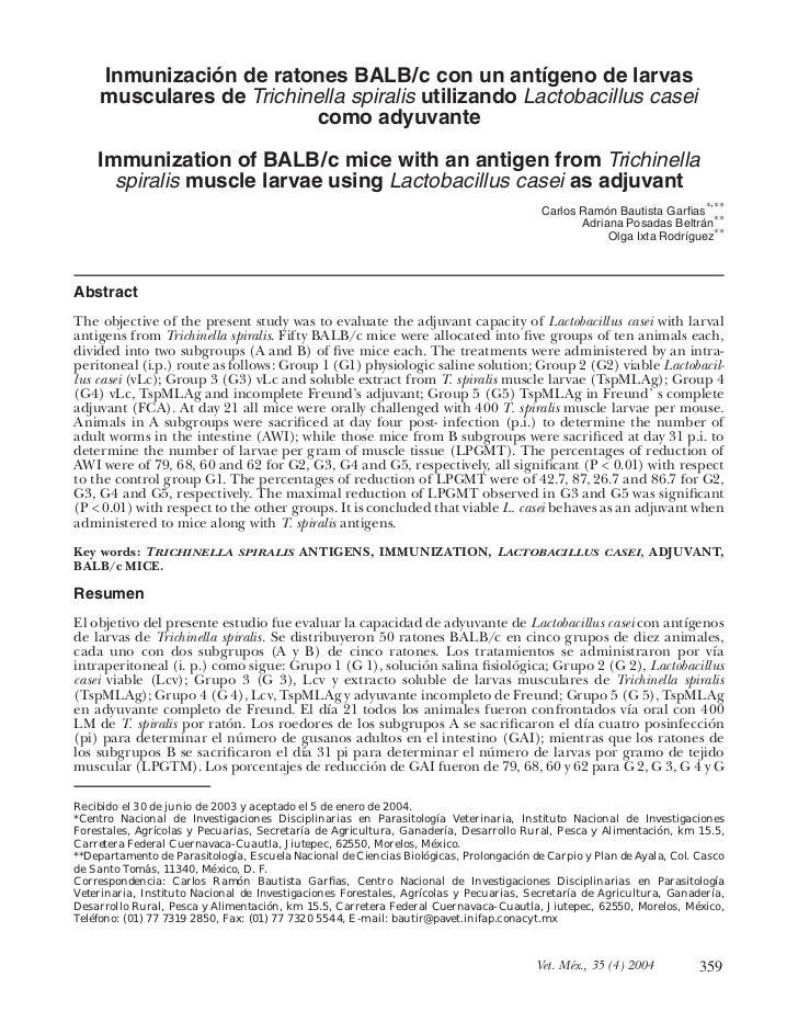 Inmunización de ratones BALB/c con un antígeno de larvas     musculares de Trichinella spiralis utilizando Lactobacillus c...