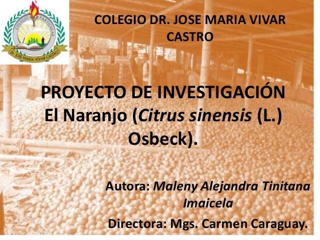 COLEGIO DR. JOSE MARIA VIVAR                 CASTROPROYECTO DE INVESTIGACIÓNEl Naranjo (Citrus sinensis (L.)          Osbe...