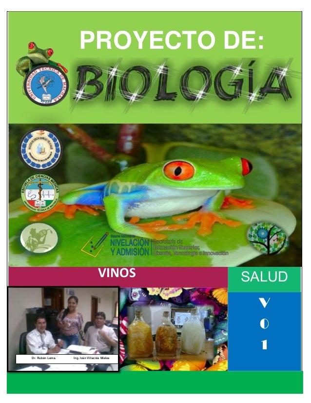 PROYECTO DE:  SALUD  VINOS  V 0 1 Dr. Rubén Lema.  Ing. Iván Villacrés Mieles  I