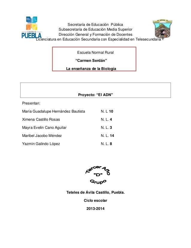 Secretaría de Educación Pública Subsecretaría de Educación Media Superior Dirección General y Formación de Docentes Licenc...