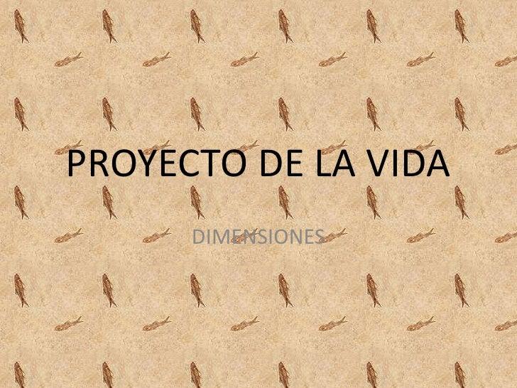 PROYECTO DE LA VIDA      DIMENSIONES