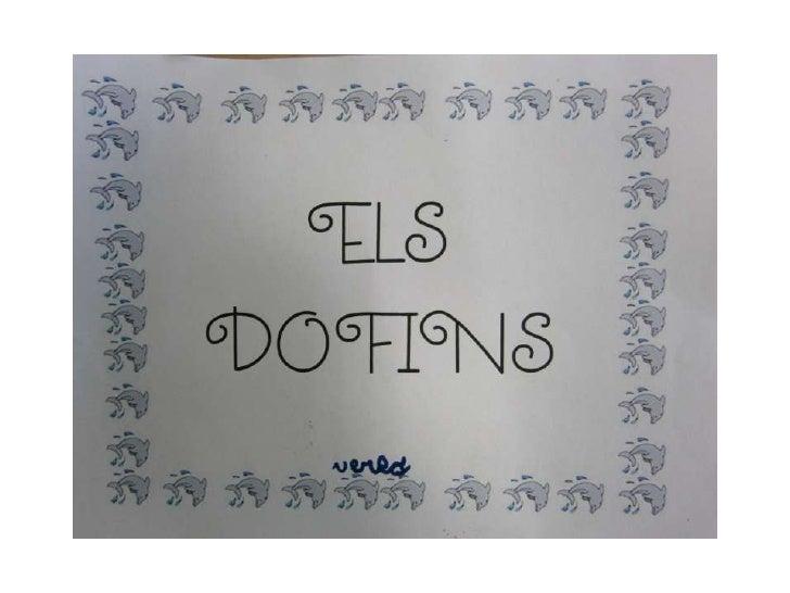Proyecto delfines
