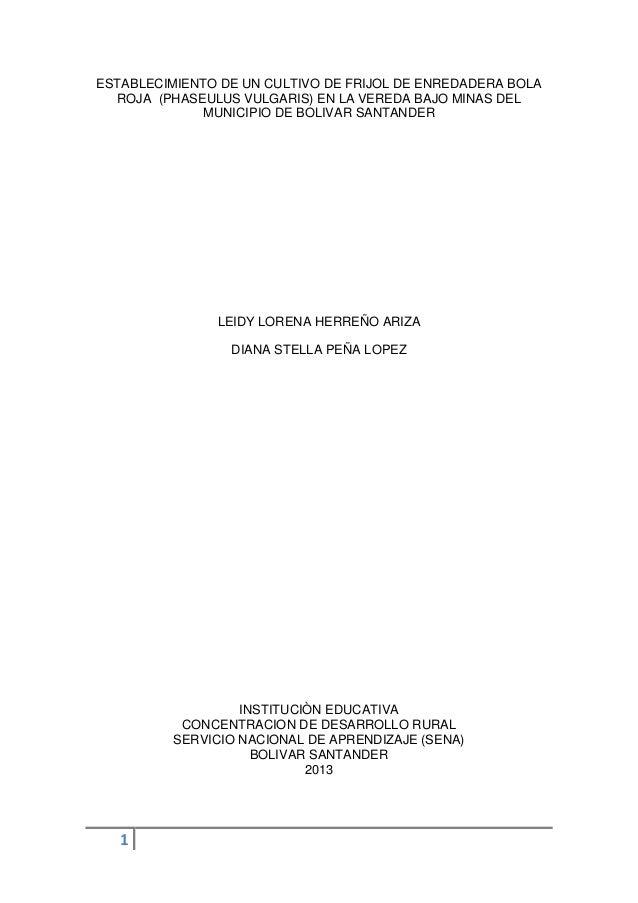 ESTABLECIMIENTO DE UN CULTIVO DE FRIJOL DE ENREDADERA BOLA ROJA (PHASEULUS VULGARIS) EN LA VEREDA BAJO MINAS DEL MUNICIPIO...
