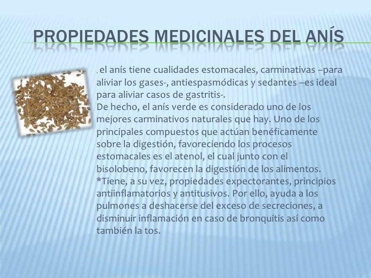 proyecto de plantas medicinales On proyecto de investigacion de plantas ornamentales