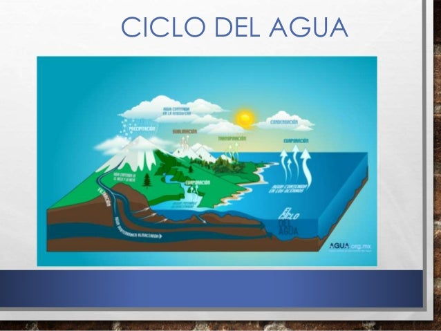 Reusar y reutilizar un verde medio ambiente y reusar y for Recuperar agua piscina verde