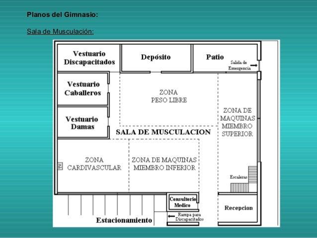 Proyecto de un gimnasio for Gimnacio o gimnasio