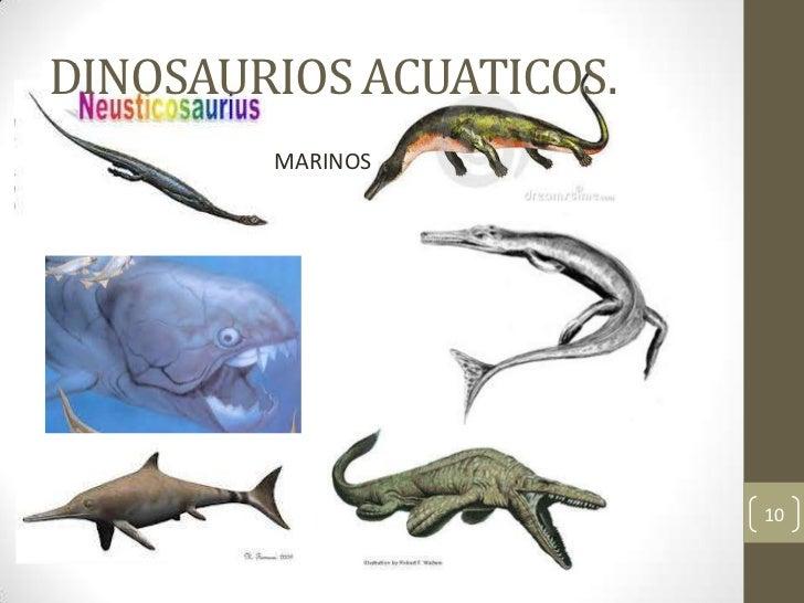 Proyecto De Vida Emiliano Los dinosaurios terrestres son más conocidos que los acuáticos por la sencilla razón de que han sido más accesibles a través de los yacimientos y todas las historias y leyendas se suelen basar en este tipo de dinosaurio en concreto. proyecto de vida emiliano