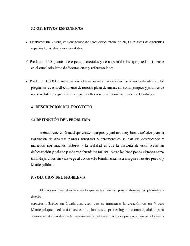 Proyecto de vivero guadalupe for Definicion de vivero