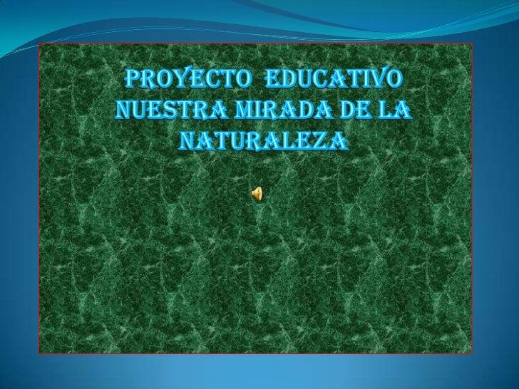 PROYECTO  EDUCATIVO<br />NUESTRA MIRADA DE LA NATURALEZA<br />hacia la naturaleza<br />Cátedra: Física<br />Docente: Silvi...