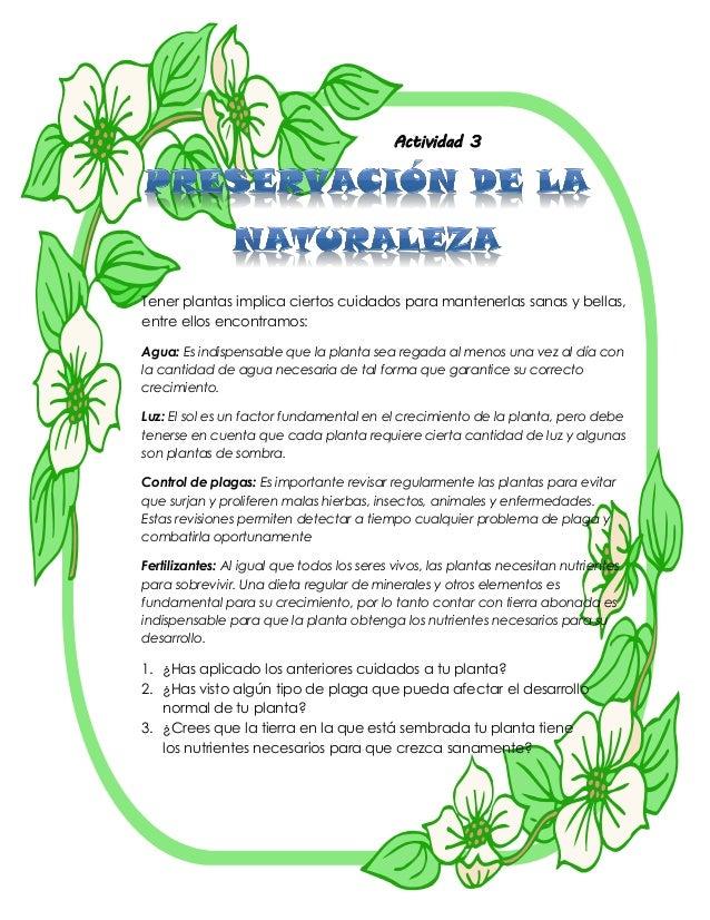 Proyecto el cuidado de las plantas