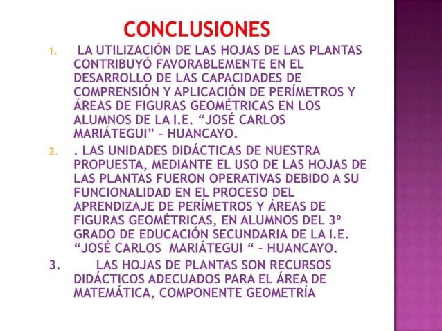 1.  LA UTILIZACIÓN DE LAS HOJAS DE LAS PLANTAS   CONTRIBUYÓ FAVORABLEMENTE EN EL   DESARROLLO DE LAS CAPACIDADES DE   COMP...