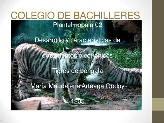 COLEGIO DE BACHILLERESPlantel nopala 02Desarrollo y características dedocumentos electrónicosTigres de bengalaMaría Magdal...